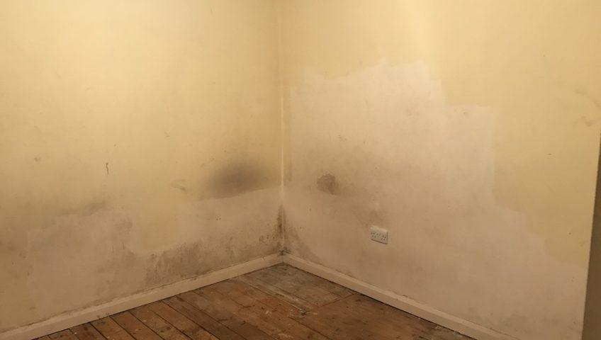 Rising Damp in a corner